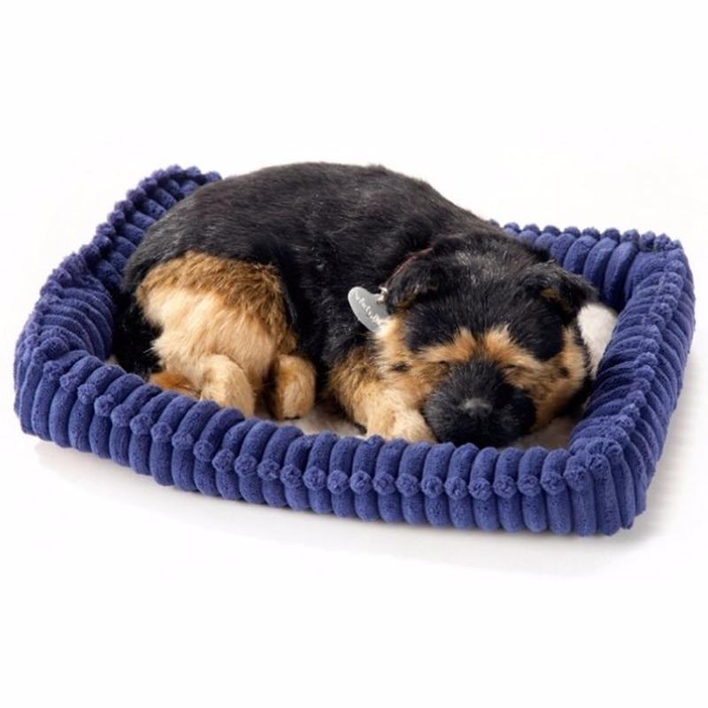 Echte slapende German Shepherd pup