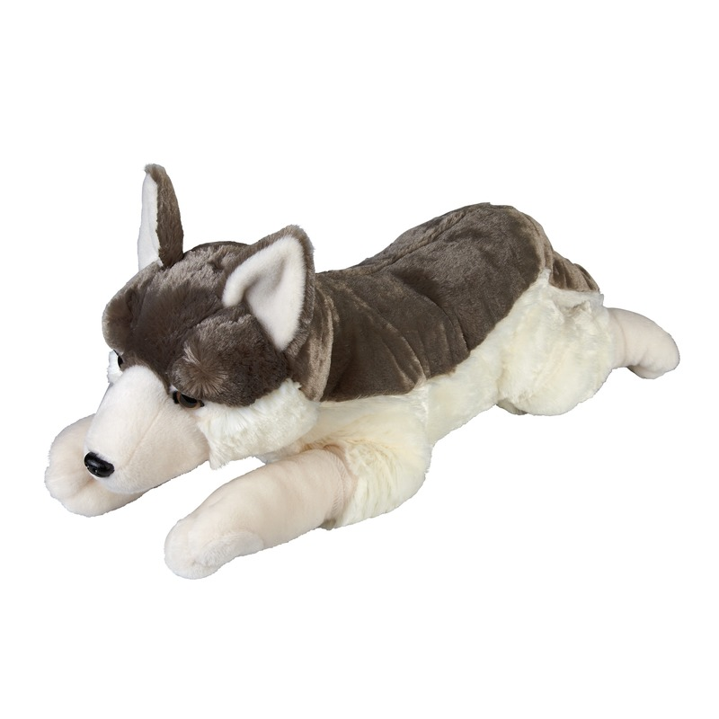 Grote pluche grijze liggende wolf/wolven knuffel 60 cm speelgoed