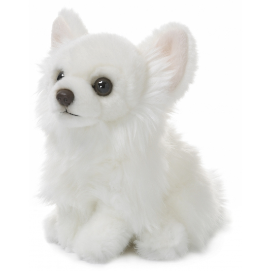 Honden Chihuahua knuffel wit 19 cm