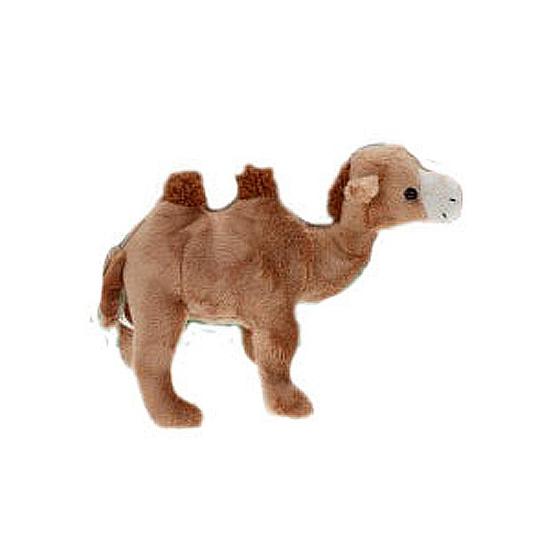 Knuffel kameeltje 22 cm