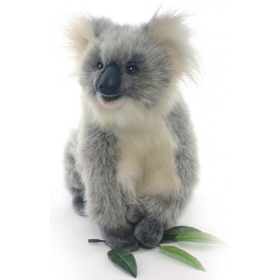 Koala knuffeldieren 23 cm