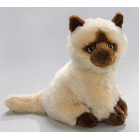 Pluche knuffel Siamese kat/poes 23 cm