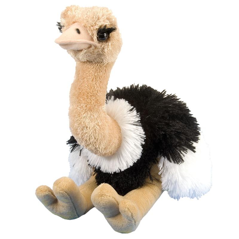 Pluche struisvogel knuffel 35 cm speelgoed