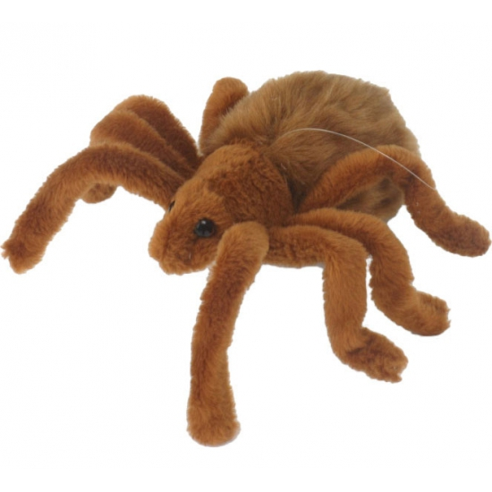 Pluche tarantula 19 cm