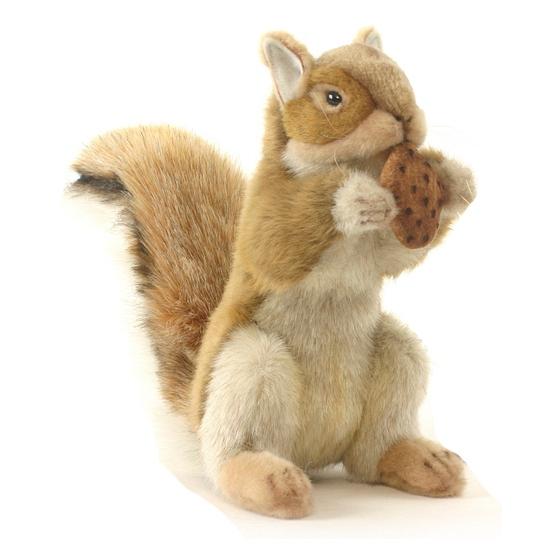 Pluchen realistische eekhoorn 22 cm