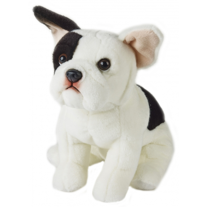 Realistische Franse Buldog Hond Knuffel 23 Cm Zittend