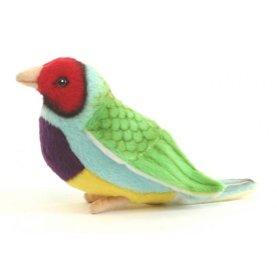Realistische Gouldamadine vogel knuffel 11 cm