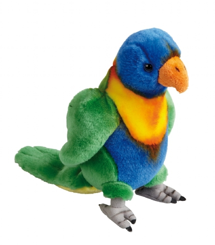 Regenboog lori papegaai 20 cm