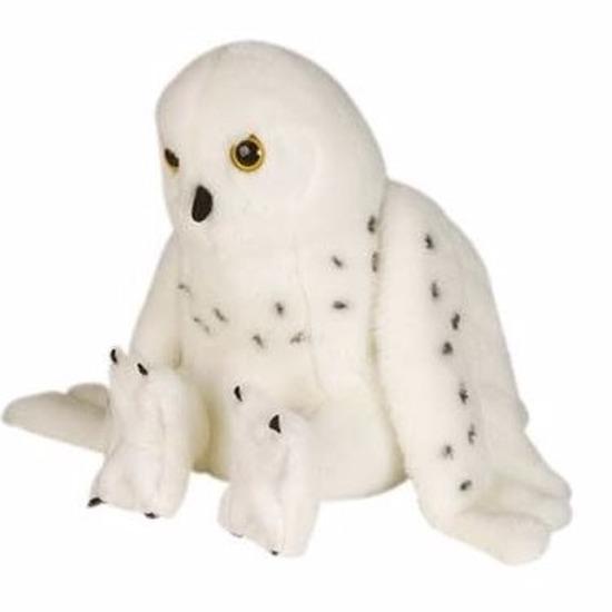 Sneeuwuilen knuffels 30 cm
