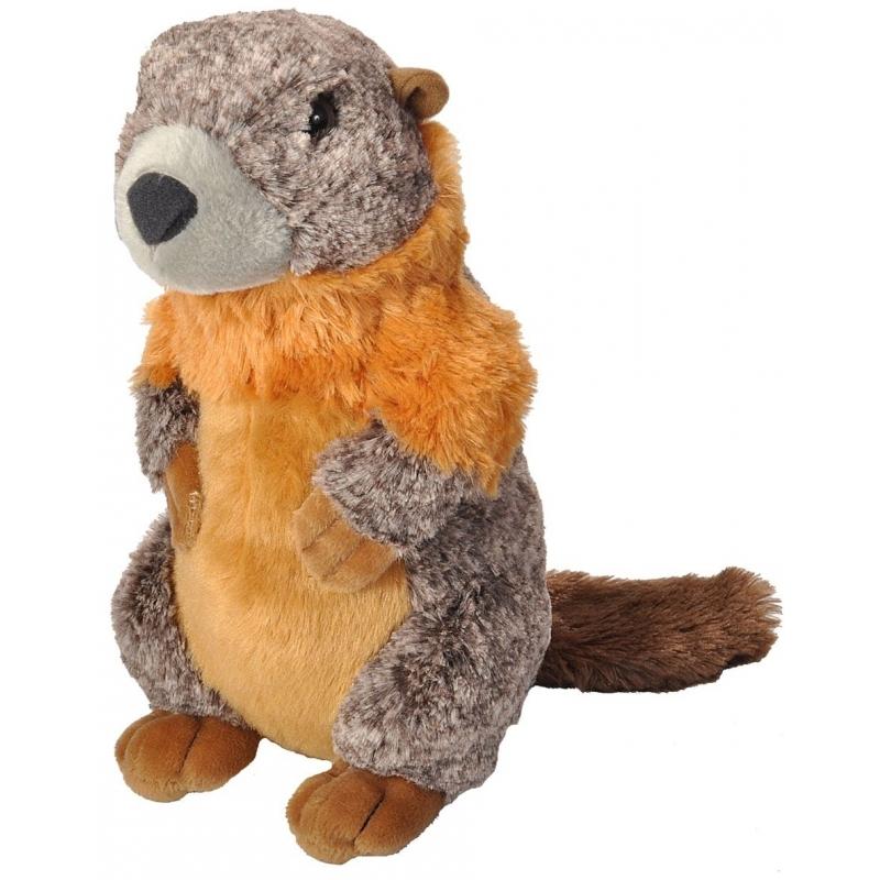 Speelgoed dieren marmot knuffel pluche 30 cm