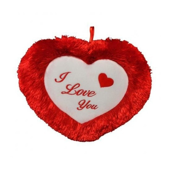 Valentijn - Pluche rood hart kussen I Love You 45 cm
